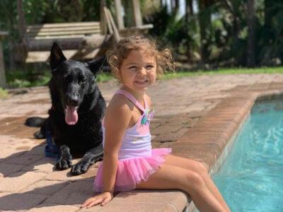 Kid Safe Family Protection Dog