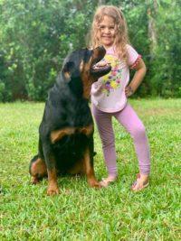 Harley Family Protection Dog