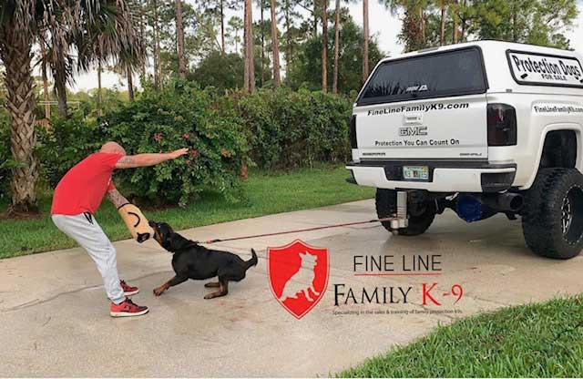 Harley Family Protection Dog