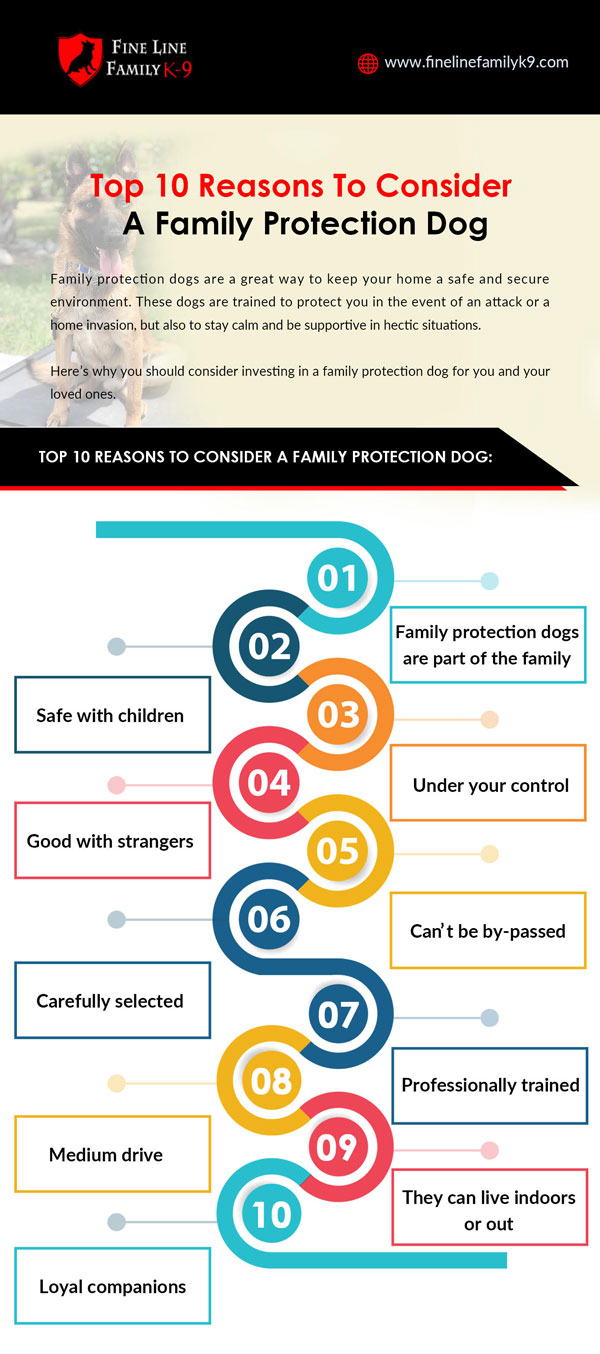 Top 10 reasons to consider a family protection dog