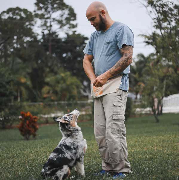 Steve training a dog