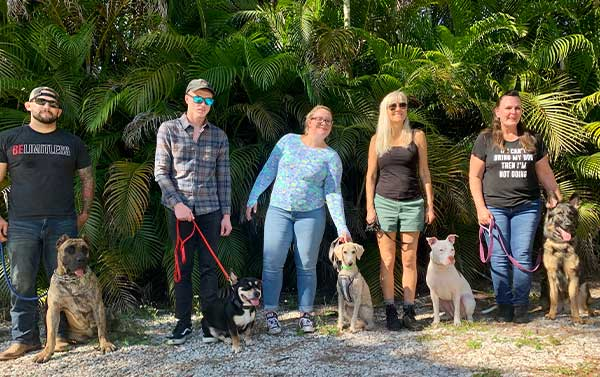 Group Dog Training Class