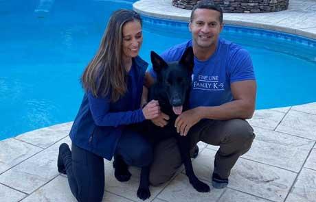 Kodo German Shepherd Protection Dog with New Home