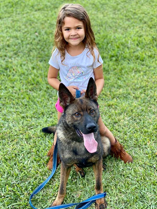 German Shepherd Protection Dog With Kid
